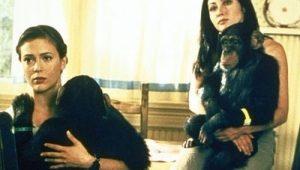 Charmed: S02E20